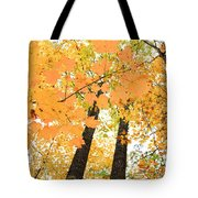 Autumn Days Tote Bag