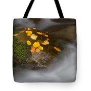 Autumn Detail Tote Bag
