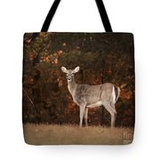 Autumn Doe Tote Bag