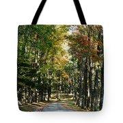 Autumn Drive Tote Bag