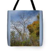 Autumn Ending Tote Bag