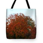 Autumn Eve Tote Bag