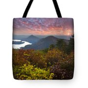 Autumn Evening Star Tote Bag by Debra and Dave Vanderlaan