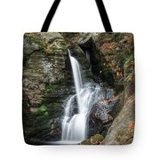 Autumn Fall Tote Bag by Bill Wakeley