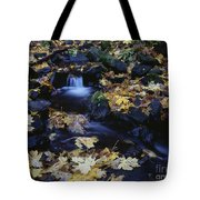 Autumn Fall Colors Starvation Creek State Park Tote Bag