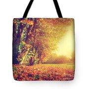Autumn Fall Landscape In Park Tote Bag