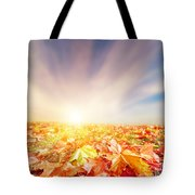 Autumn Fall Landscape Tote Bag