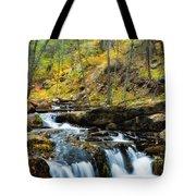 Autumn Falls  Tote Bag