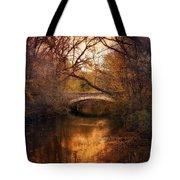 Autumn Finale Tote Bag