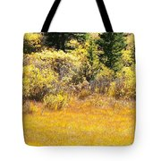 Autumn Fire In The Grass Tote Bag