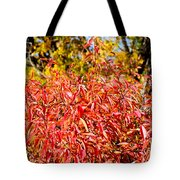 Autumn Flames Tote Bag