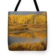 Autumn Foliage Surrounds A Pool In The Tote Bag by David Ponton