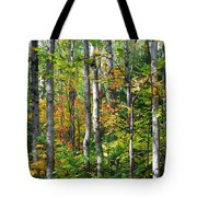 Autumn Forest Detail Tote Bag
