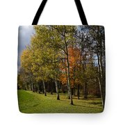 Autumn Forests And Fields Tote Bag