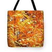 Autumn Fury Tote Bag