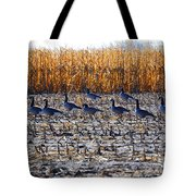 Autumn Geometry By Jrr Tote Bag