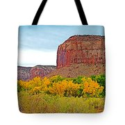 Autumn Gold On Highway 211 Going Into Needles District Of Canyonlands National Park-utah   Tote Bag