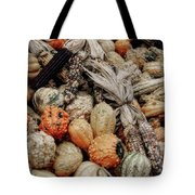 Autumn Gourds 2 Tote Bag