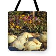Autumn Gourds Tote Bag