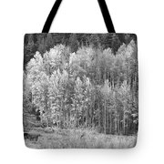 Autumn Grazing Horses Bonanza Bw Tote Bag by James BO  Insogna