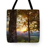 Autumn Highlights Tote Bag by Debra and Dave Vanderlaan