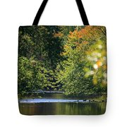 Autumn Highlights On The Quinnebaug River Tote Bag