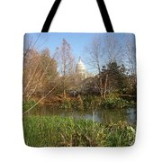 Autumn In Washington Dc Tote Bag