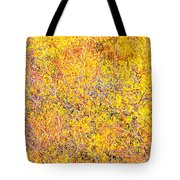 Autumn In December Tote Bag