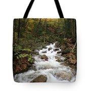 Franconia Notch In Autumn  Tote Bag