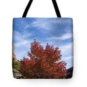Autumn In Glenwood Canyon - Colorado Tote Bag
