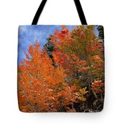 Autumn In Idaho Tote Bag