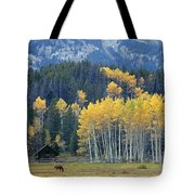 1m9359-autumn In Jackson Hole Ranch Country Tote Bag