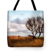 Autumn In Maine Tote Bag