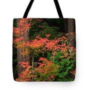 Autumn In Mount Rainier Forest Tote Bag