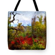 Autumn In New England Tote Bag