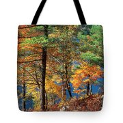 Autumn In New Jersey Tote Bag