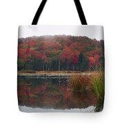 Autumn In Northern Vermont Tote Bag