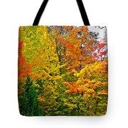 Autumn In Southwest Michigan Tote Bag