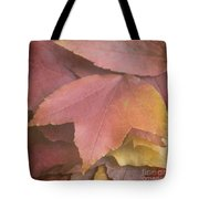 Autumn In Textures Tote Bag