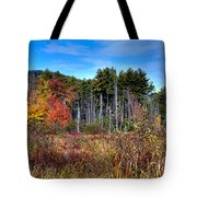 Autumn In The Adirondacks Tote Bag by David Patterson