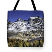 Autumn In The Alps 1 Tote Bag