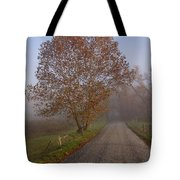Autumn In The Cove V Tote Bag