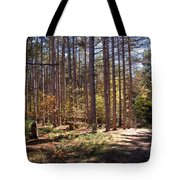 Autumn In The Pines Tote Bag