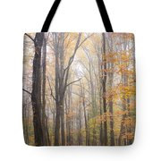 Autumn In The Smoky Mountains Tote Bag