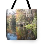 Autumn In A Swamp Tote Bag