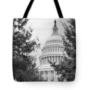 Autumn In The Us Capitol Bw Tote Bag