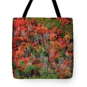 Autumn In The Wasatch Range Tote Bag