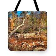 Autumn In Virginia Tote Bag