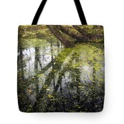 Autumn In Wildwood Park Tote Bag