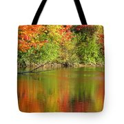 Autumn Iridescence Tote Bag